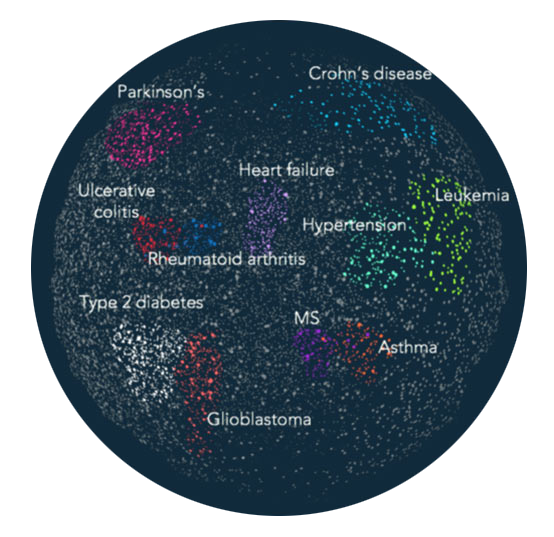 The Social Graph of Disease Interconnectivity