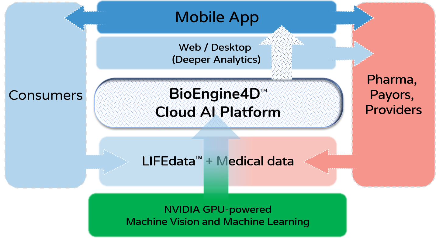BioEngine4D Vertical and Horizontal Platform